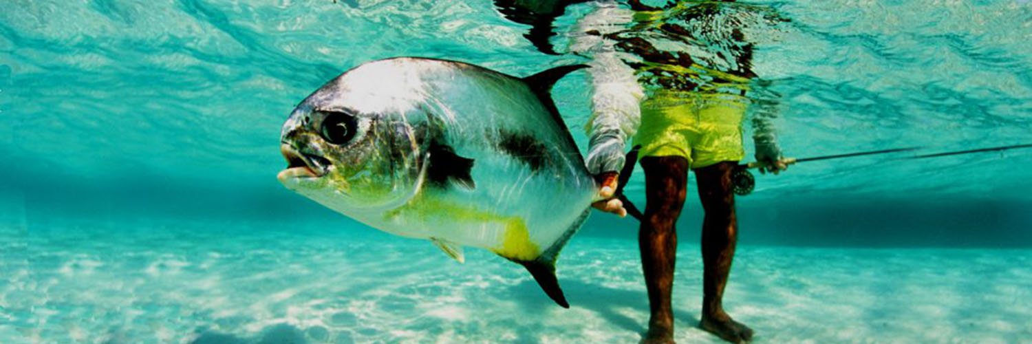 GET THE FISHING TRAVEL FACTS:<br />GOOD, BAD, AND UGLY